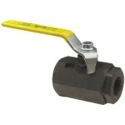 1 1/2 BALL VALVE W/ROPE HOLE 019-0159-571